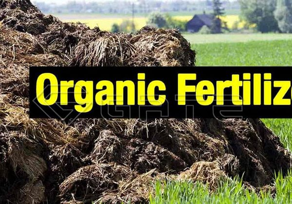How is high quality organic fertilizer produced?