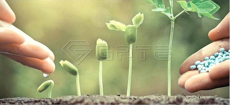 NPK Compound Fertilizer Plant Line